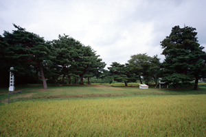 無量光院跡の画像 p1_10